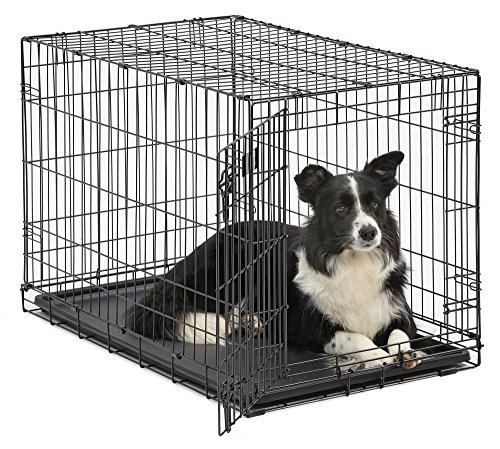 Dog Crate | MidWest iCrate 36' Folding Metal Dog Crate w/Divider Panel, Floor Protecting Feet & Leak-Proof Dog Tray | 36L x 23W x 25H Inches, Intermediate Dog Breed, Black