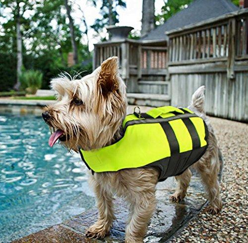 Gilet Animali Galleggiante l Riflettente Cani Verde Salvagente Per Giubbotto Domestici qxwX0fqTt