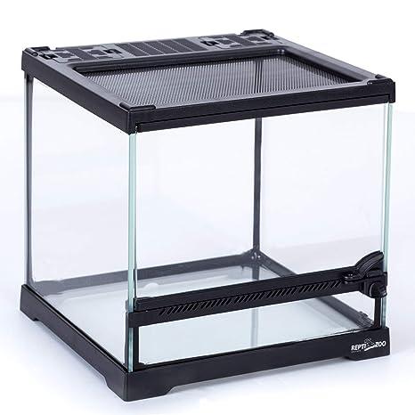 Amazon Com Reptizoo Mini Reptile Glass Terrarium Front Opening
