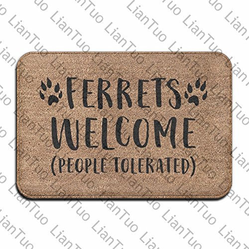 Ferrets Welcome People Tolerated Cool 15.7 X 23.6 In Absorbent Non Slip Floor Rug Entrance Rug