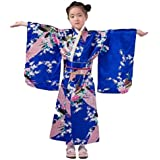 Amazon.com: Bristol Novelty Geisha Girl Costume (L) Childs ...
