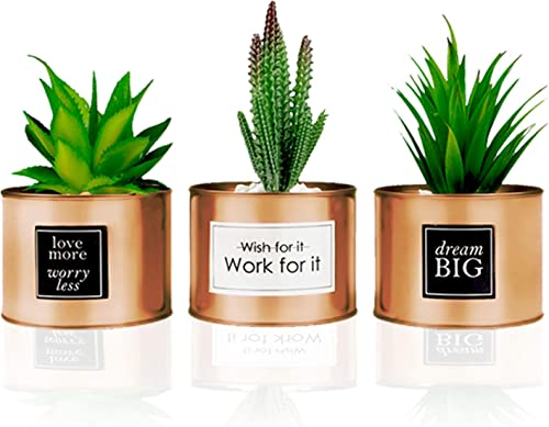 Office Decor for Women Desk – Desk Decor for Women, Bedroom Decor for Women – Desk Decorations for Women Office – Bookshelf Decor, Boho Home Decor, Fake Cactus Office Plant Decor for Cubicle Decor