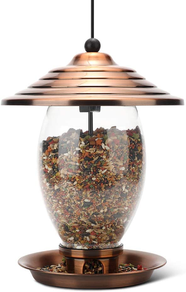 Realead Wild Bird Feeder Outdoor Hanging for Garden Yard Outside Decoration,Metal Glass Bird Feeder 3-Pound Seed Capacity, Easy to Clean