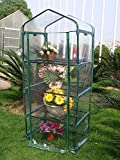 Quictent Hot 4 tier Mini Portable Green Hot Grow Seeds House Indoor Outdoor w/Shelves Greenhouse