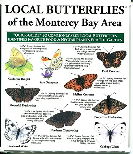 Local Butterflies of the Monterey Bay ()