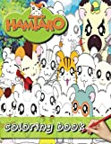 Hamtaro coloring book : coloring book: stress coloring book