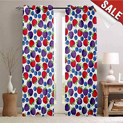 Colorful Drapes for Living Room Wild Fruits Collections Raspberry Blueberry and BlackBerry Fresh Healthy Options Window Curtain Fabric W96 x L108 Inch Multicolor