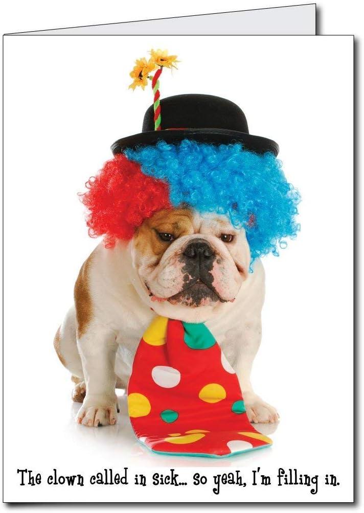 Amazon.com: 2 x3 Feliz cumpleaños Funny Payaso perro ...