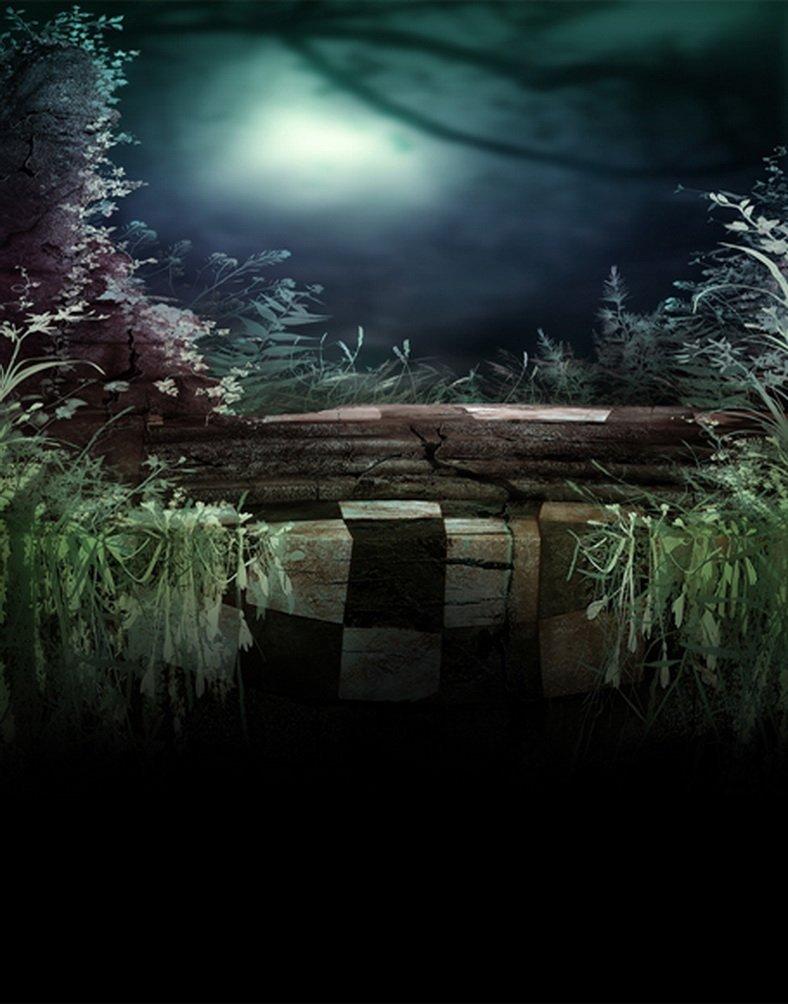 Moon Grass写真Backdrops写真小道具Studio背景5 x 7ft   B01GYVCQS2