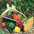Maine Garden Hod from Maine Garden Products