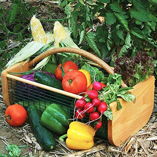[Maine Garden Hod] (Gardening Basket)