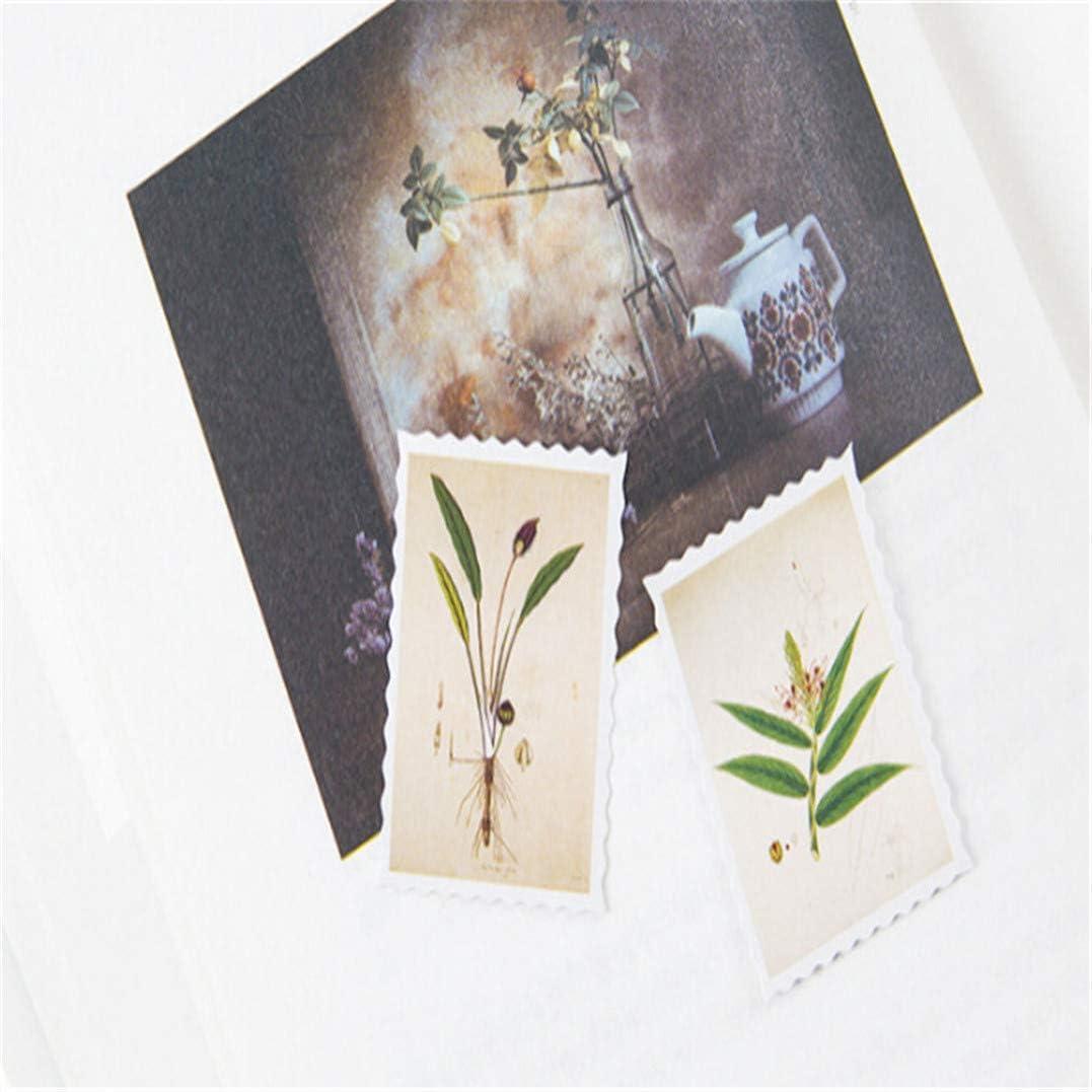 Carte des plantes Garispace Litt/érature et Art Sticker P/âte Mini Papier Autocollant Paquet Diary Diy D/écoration Autocollant Album Scrapbooking Emballage En Bo/îte