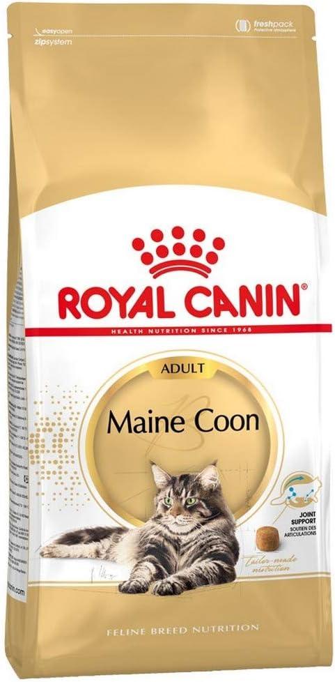 Royal Canin Maine Coon 400 g, Alimento, Alimento de animales, Comida para gatos seco