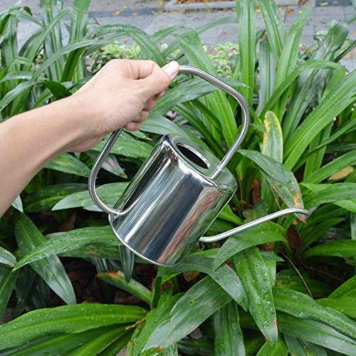 Cheap Calunce rustic retro textured gardening tools long spout watering can1.5L (Mirror Polish) for sale