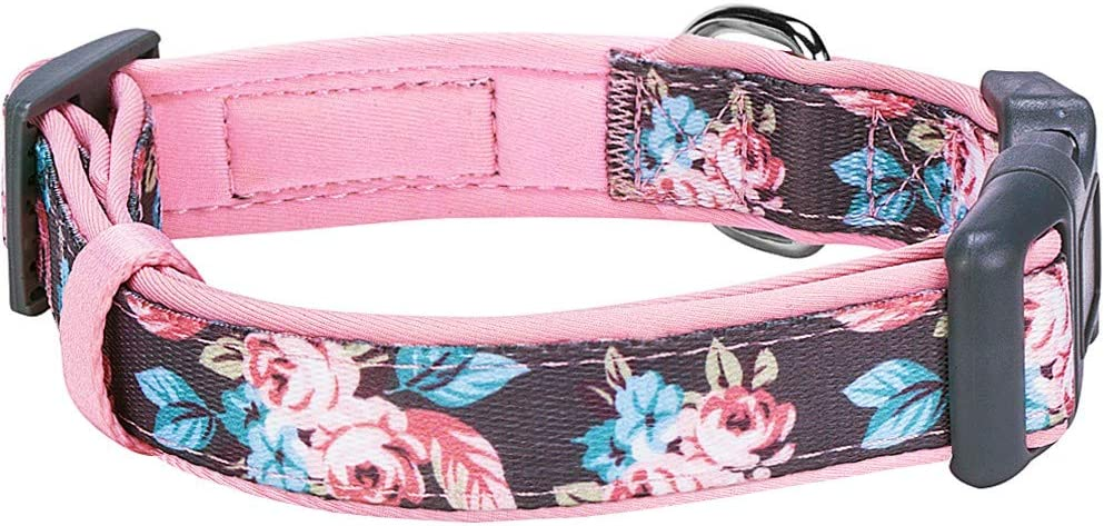 "Blueberry Pet 7 Patterns Soft & Comfy Rose Flower Prints Girly Padded Adjustable Dog Collar, Large, Neck 18""-26"" : Pet Supplies"