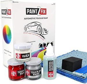 PAINT2FIX Mercury Grey Mc 1H9 Touch Up Paint Compatible with Lexus ES350 for Paint Scratch and Chips Repair - Color Match Guarantee - Bronze Pack