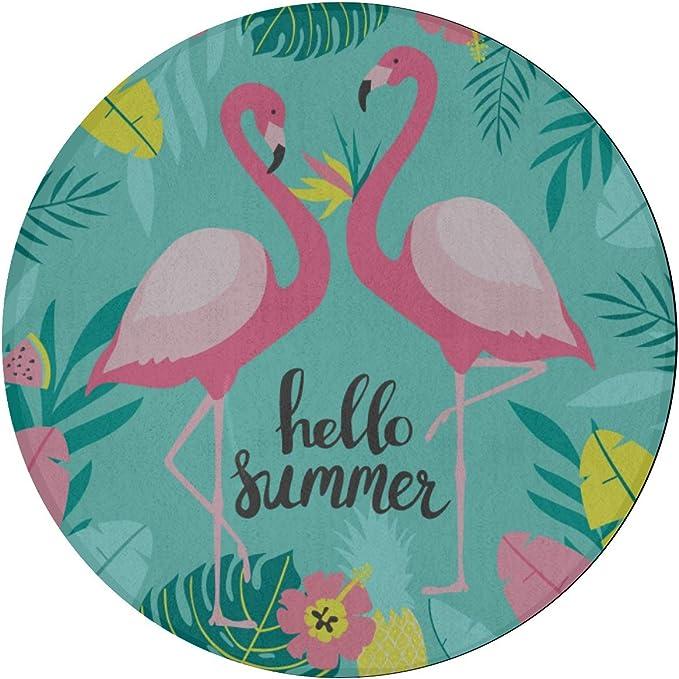 Alfombra de área pequeña Flamingo Pink Accesorios de moda Alfombra de área de comedor Alfombra de microfibra antideslizante redonda de 2 pies Dormitorio lavable a máquina Alfombras modernas para coci: Amazon.es: Hogar