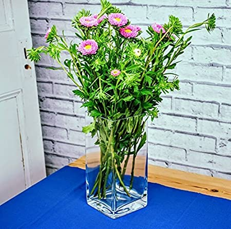 Solavia Rectangular Glass Tall Flower Bouquet Vase/Fruit Bowl 30cm Amazon.co.uk Kitchen \u0026 Home  sc 1 st  Amazon UK & Solavia Rectangular Glass Tall Flower Bouquet Vase/Fruit Bowl 30cm ...