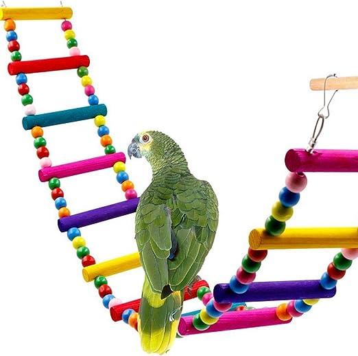 Kingnew pájaro Papagayo Juguete, Swing Colgantes de Escalera periquitos cacatúas, Mascotas pájaro Budgie Love Bird Juguete (4 escaleras): Amazon.es: Productos para mascotas