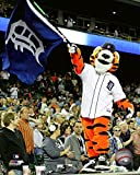 "Paws Detroit Tigers Mascot 2017 Action Photo (Size: 8"" x 10"")"