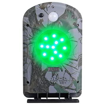 Amazon.com: Lilbees - Comedero de cerdo, luz verde activada ...