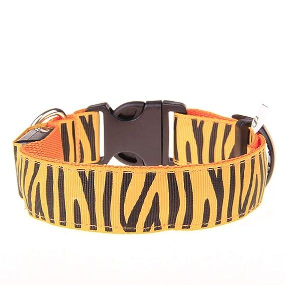 CAOQAO - Collar Ajustable para Perro y Gato de Seguridad Nocturna ...