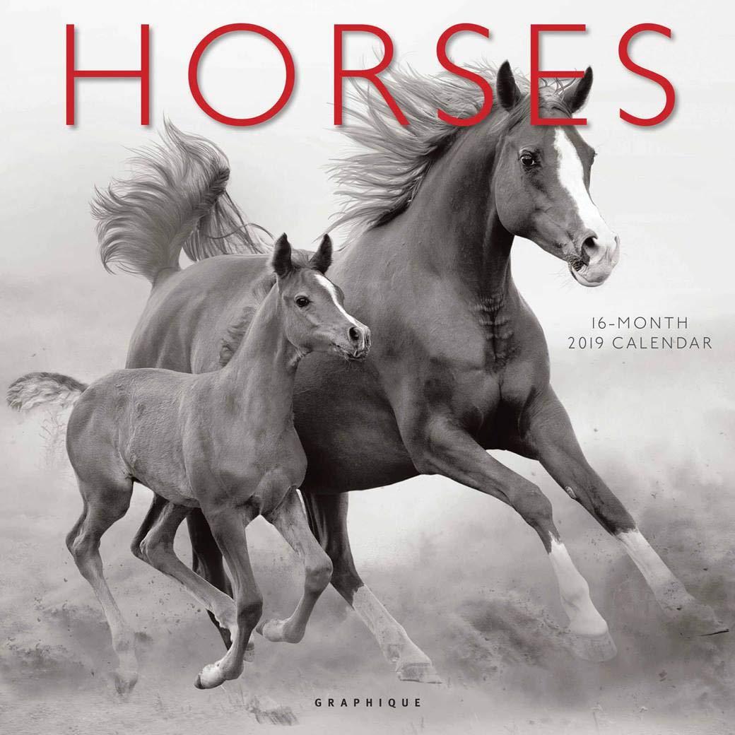 Calendario 2019 caballos salvajes - caballos en la ...