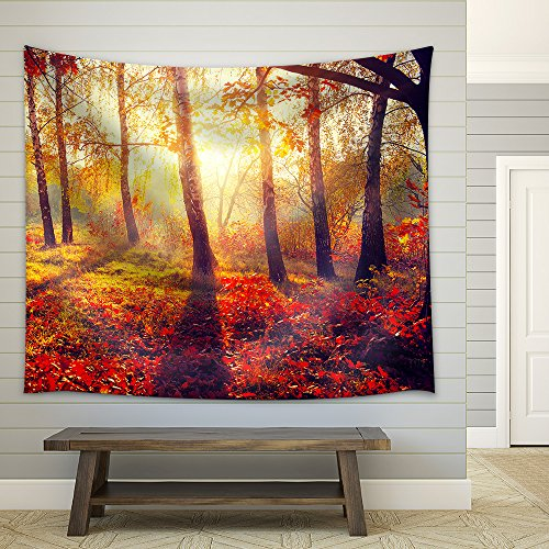 Autumn Fall Autumnal trees in sun rays Fabric Wall Tapestry