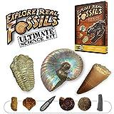 Ultimate Fossil Science Kit – 15 Genuine Fossils Including Dinosaur Specimens!