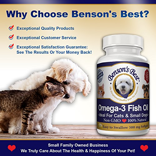 Benson 39 s best omega 3 fish oil for cats small dogs for Best omega 3 fish