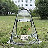 Asdomo Plant House Greenhouse, Mini Pop up Greenhouse Small Indoor Outdoor Gardening Flowerpot Cover Backyard Flower Shelter 70x70x80CM