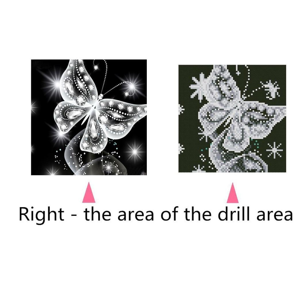 Koly Peinture en Diamant 5D DIY Broderie de diamants Point de Croix en R/ésine D/écoration de Maison Salon Chambre Diamond Painting Kits D/écoration de Motif g/éom/étrique Fleur bouddhique o, 25*25cm