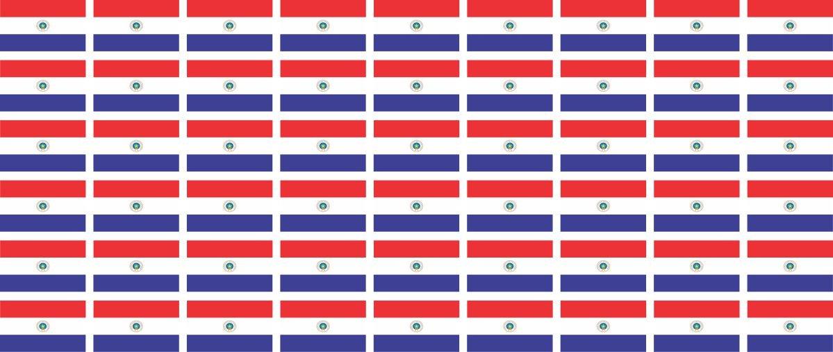 Mini bandiere/bandiere insieme - bandiera sventolante - 20x12mm - adesivi - Paraguay - Standard pour la voiture, le bureau, la maison et l'é cole - 54 pezzo la maison et l' école - 54 pezzo Jintora