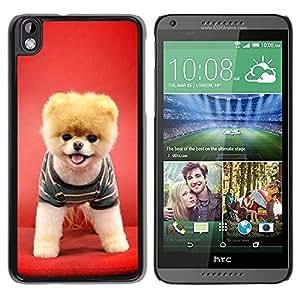 Be Good Phone Accessory // Dura Cáscara cubierta Protectora Caso Carcasa Funda de Protección para HTC DESIRE 816 // Red Puppy Dog Funny Pet Cute Canine
