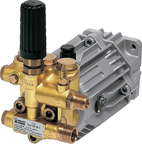 AR North America SJV3G27D-EZ 3100 PSI/3.0 GPM Annovi Reverberi Direct Drive Pump with Easy Start -