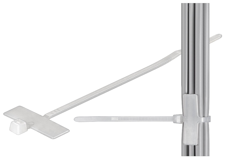 Wentronic Kabelbinder mit Beschriftungsfeld 100 mm: Amazon.de ...