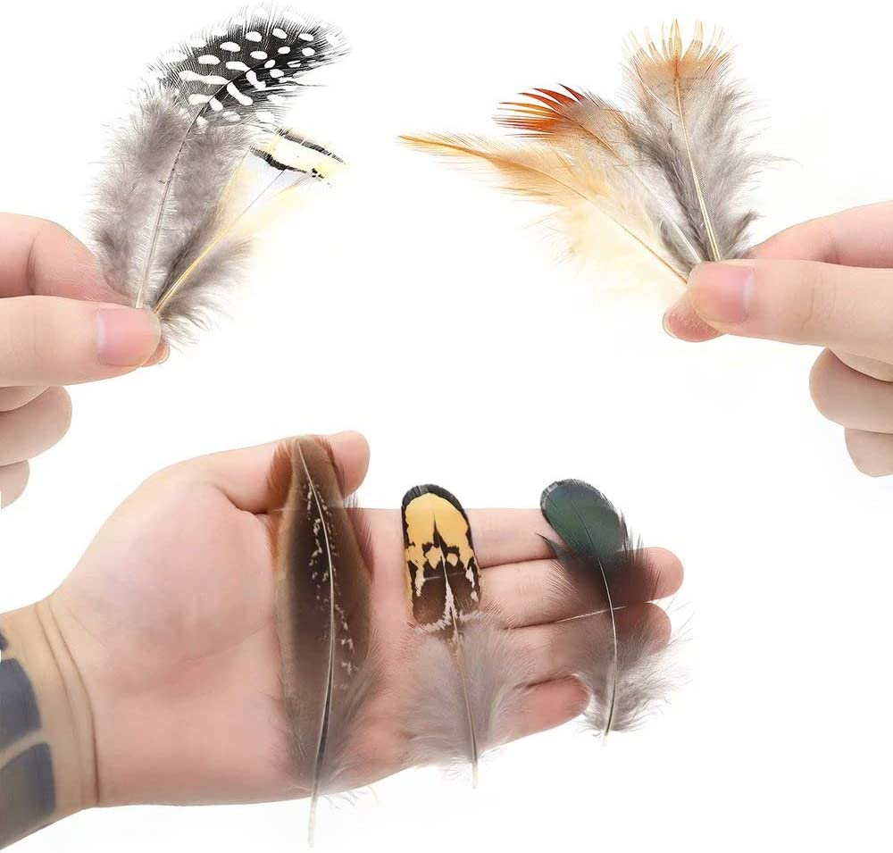 360pcs 12 Styled Natural Feathers Assorted Mixed Feathers for Jewelry and Dream Catcher Crafts