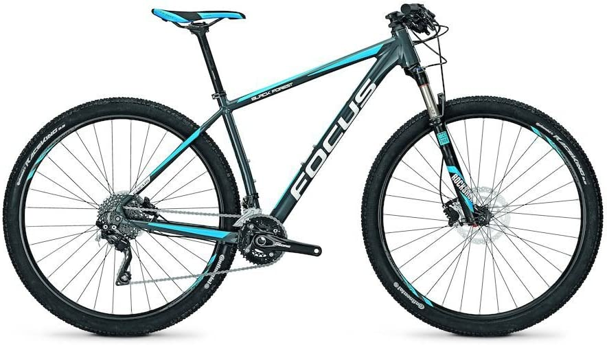 Focus Mountain Bike Black Forest Pro 29 20 g 29 , Color slategrey, tamaño 47, tamaño de Rueda 29.00 Inches: Amazon.es: Deportes y aire libre