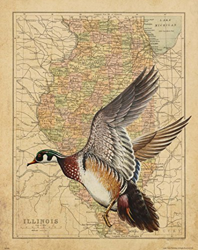 Apple Creek Illinois State Map Wood Duck Goose Call Hunting Decoy Poster Art Print 11x14 Cabin Wall Decor Pictures (Pictures Dynasty Duck)