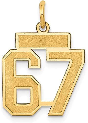 14K Yellow Gold Small Polished Number 37 Charm