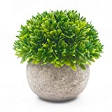 Ebristar Artificial Plants in Pots for Indoors, Mini Artificial Plants Potted for Home & Office Decortion, Lifelike Small Fake Green Plants for Desk