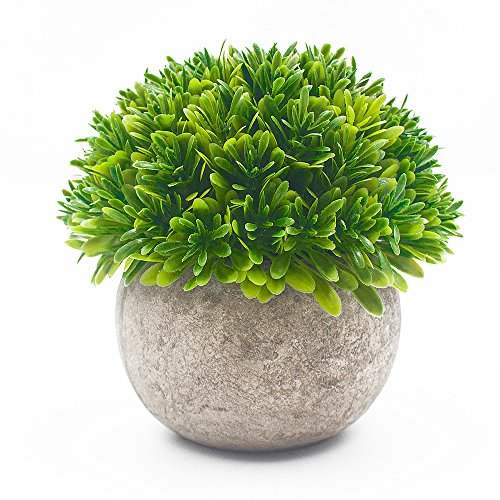 Artificial Plants in Pots for Indoors, Ebristar Mini Artificial Plants Potted for Home & Office Decortion, Lifelike Small Fake Green Plants for Desk by Ebristar