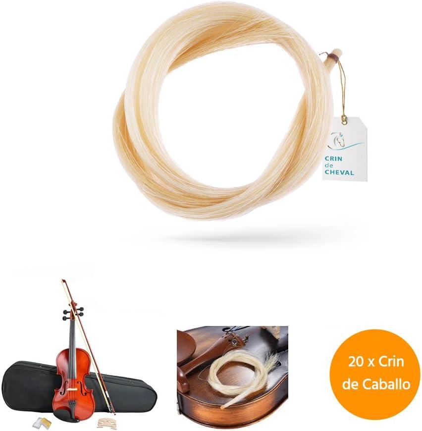 Crin De Caballo - Dos madeja pelo de caballo para violín arco u otro uso - Calidad AAA - Procedencia Mongolia - 20 gramos - 81-82 cm - Blanco