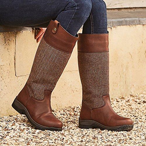 Brown Dublin Dublin Boots Eden Boots Brown Eden EYqwUvx4