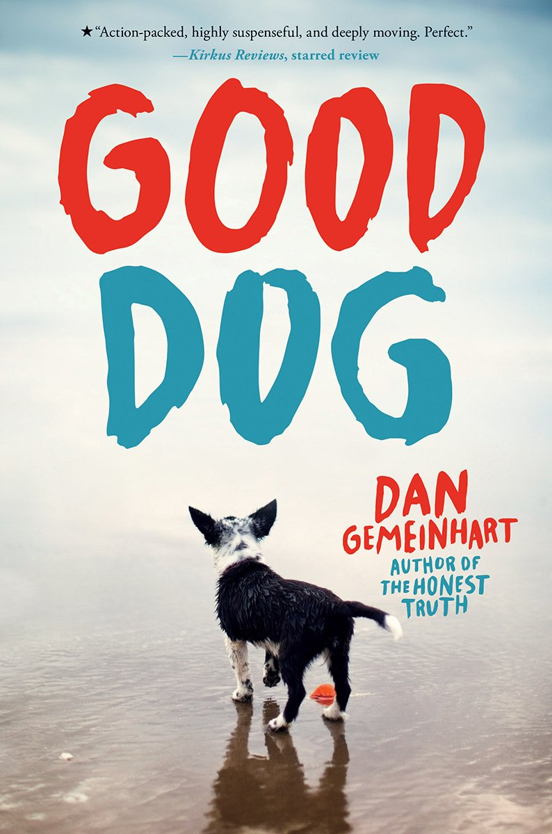 Image result for good dog gemeinhart amazon