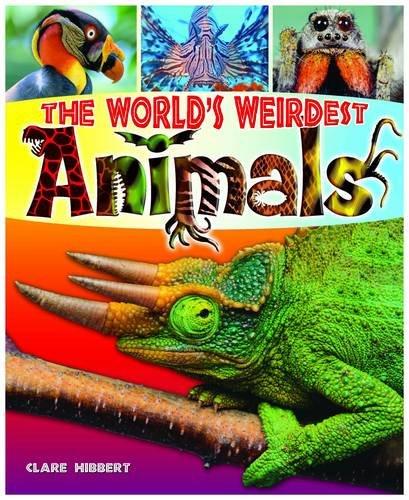 World's Weirdest Animals ebook