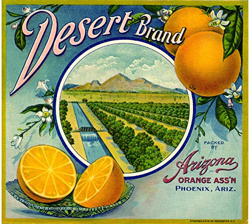 A SLICE IN TIME Phoenix Arizona Desert Brand Orange Citrus Fruit Crate Box Label Art Print