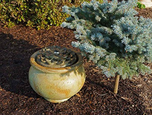 Henri Studio Cast Stone Dahlia Patio Bubbler Fountain by Henri/Stonecasters