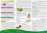 CassanOvum Boost, Fertility Supplement for egg