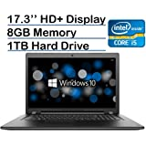Lenovo 17.3-inch HD+ (1600 x 900) High Performance Premium Laptop PC, Intel Core i5-6200U Processor, 8GB RAM, 1TB HDD, DVD-RW, HDMI, VGA, Bluetooth, 802.11ac, Webcam, Windows 10-Black